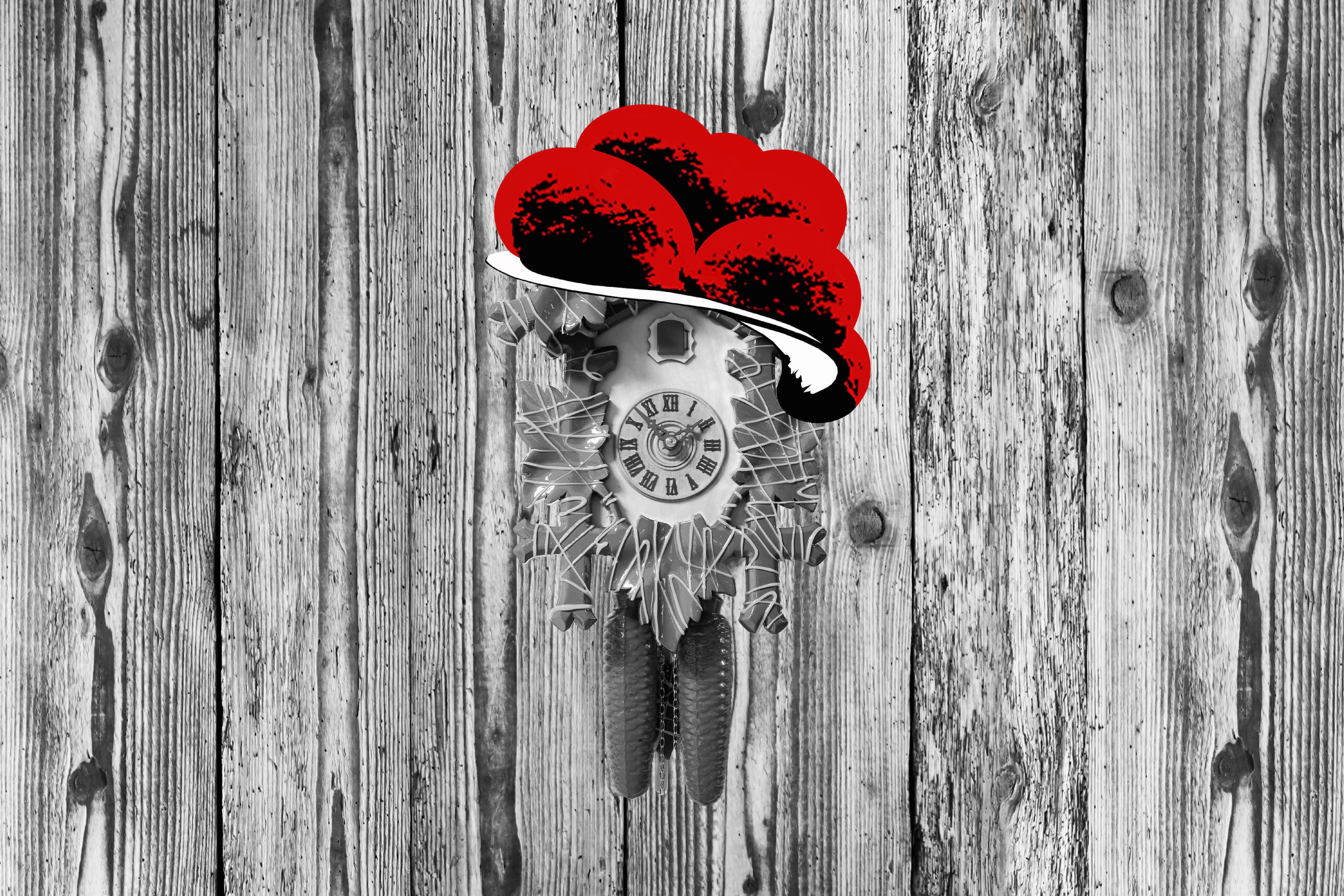 Kuckuck an Holzwand