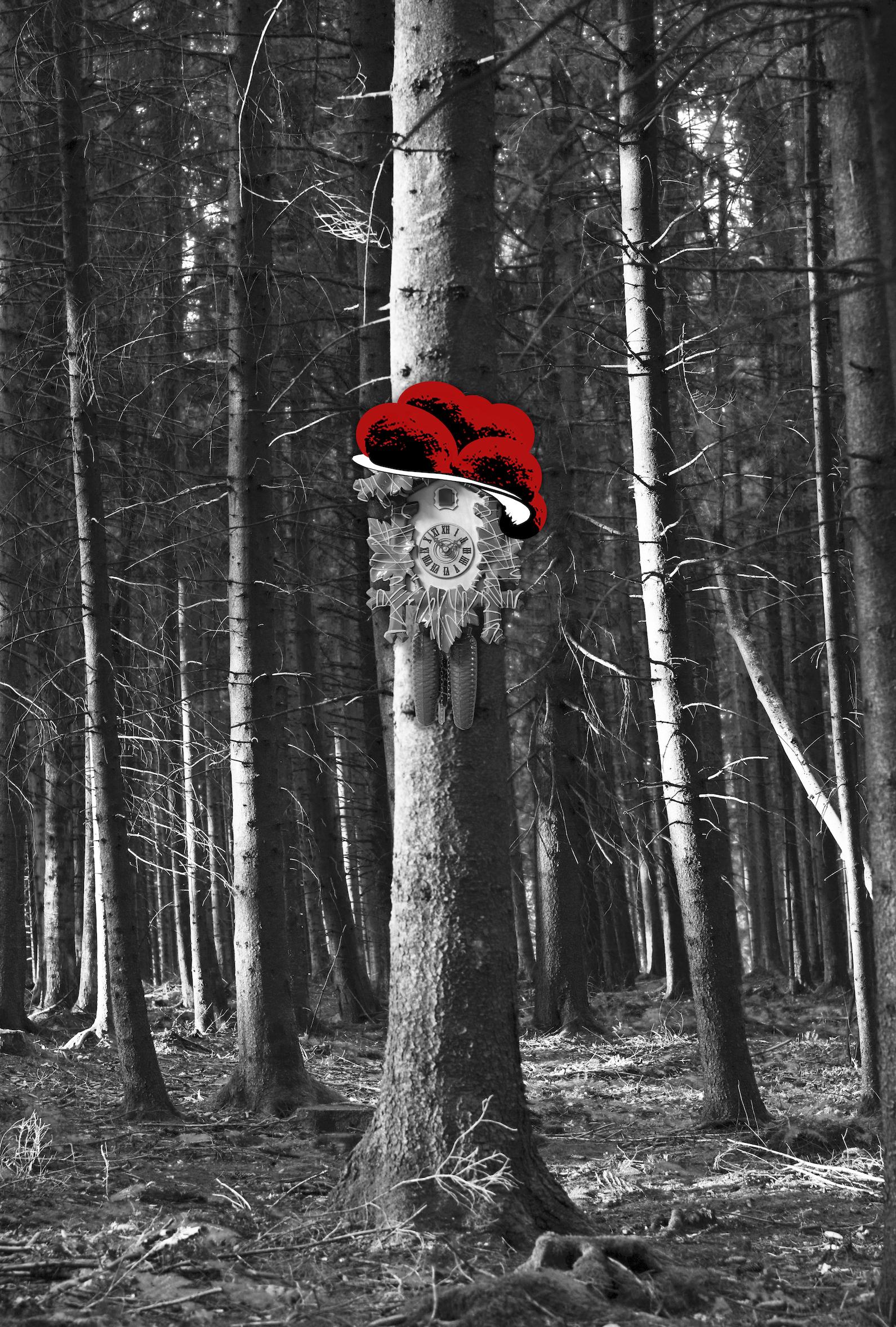 Kuckuck im Wald (hoch)